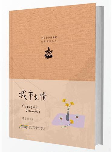 范小青小说典藏 长篇都市系列 城市表情