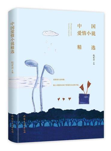 中国爱情小说精选