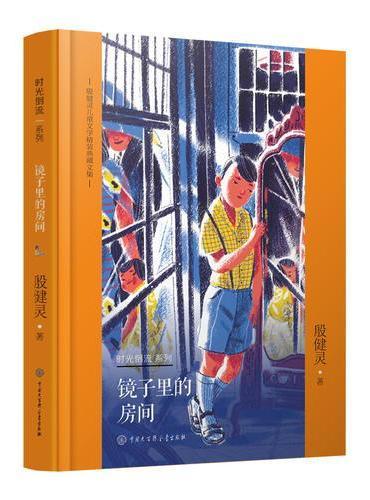 殷健灵儿童文学精装典藏文集--镜子里的房间