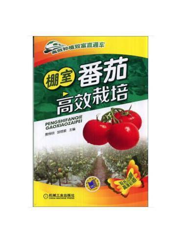 棚室番茄高效栽培