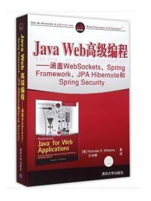 Java Web高级编程——涵盖WebSockets、Spring Framework、JPA Hibernate和Spring Security
