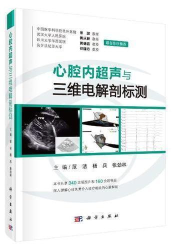 心腔内超声与三维电解剖标测