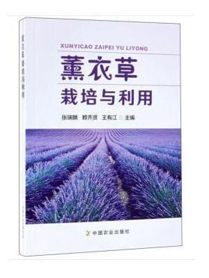 薰衣草栽培与利用