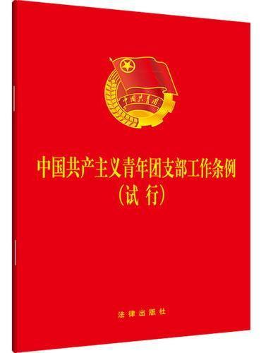 中国共产主义青年团支部工作条例(试行)(大字版)