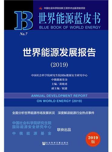 世界能源蓝皮书:世界能源发展报告(2019)
