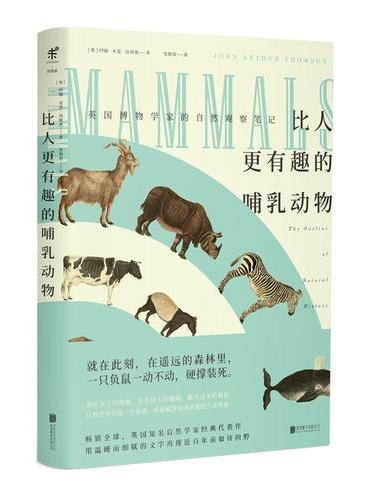 比人更有趣的哺乳动物