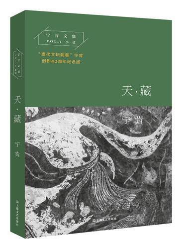 天·藏(宁肯文集)