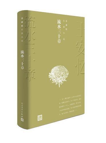 流水三十章(王安忆长篇小说)