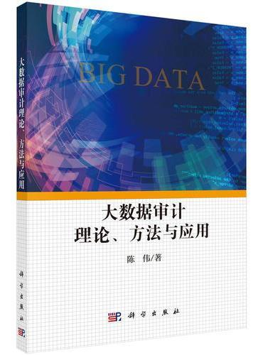 大数据审计理论、方法与应用