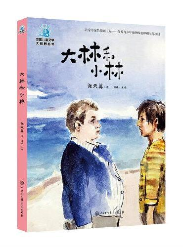 中国儿童文学大视野丛书--大林和小林》