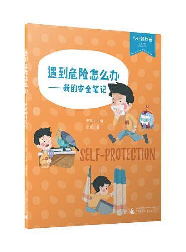 少年轻科普丛书 遇到危险怎么办 我的安全笔记