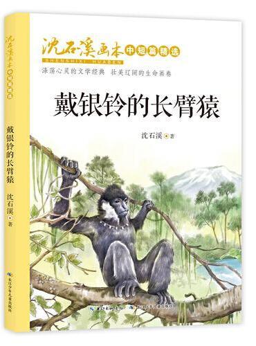 沈石溪画本·中短篇精选:戴银铃的长臂猿
