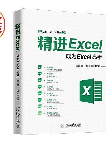 精进Excel:成为Excel高手