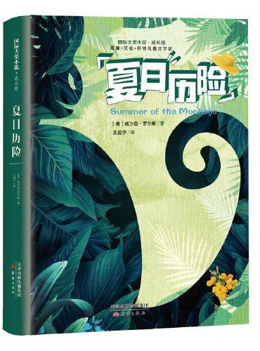 国际大奖小说·成长版——夏日历险