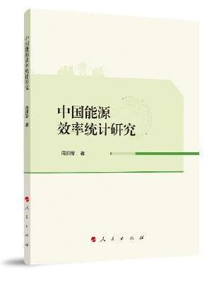 中国能源效率统计研究