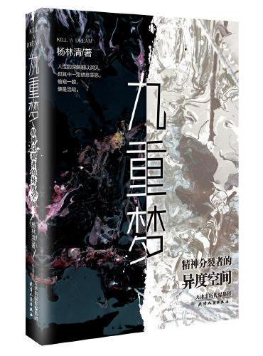 《九重梦》 中国版白夜行, 精神分裂者的异度空间