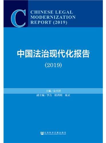 中国法治现代化报告(2019)