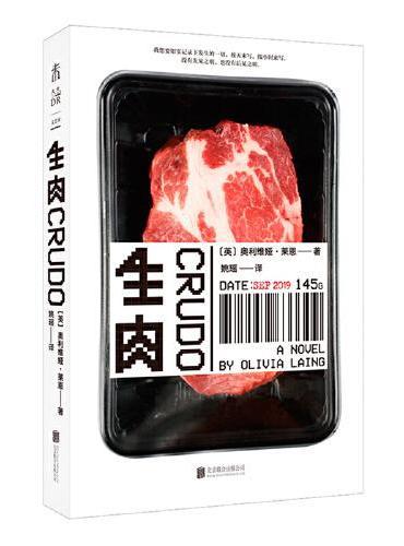 """生肉(《孤独的城市》作者新作,一本刻意""""粗糙""""的小说,一场自媒体时代的写作表演)"""
