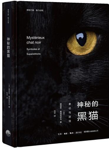 神秘的黑猫