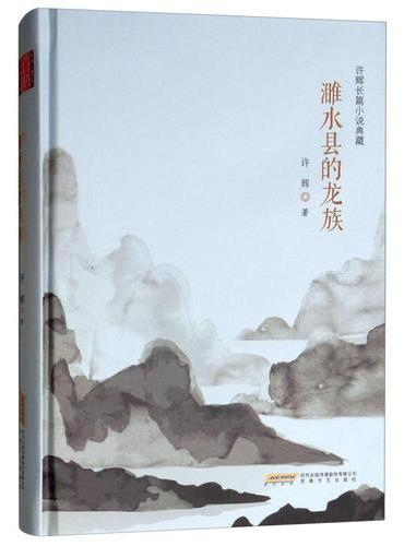 许辉长篇小说典藏:濉水县的龙族