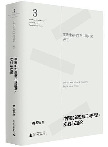 中国的新型非正规经济:实践与理论(实践社会科学与中国研究·卷三)