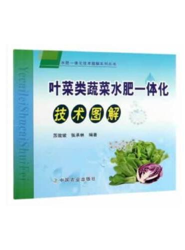 叶菜类蔬菜水肥一体化技术图解