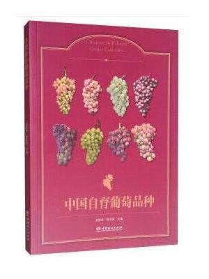 中国自育葡萄品种