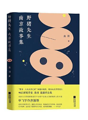 野猪先生:南京故事集