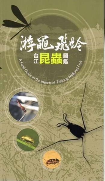 游黽飛蛉:台江昆蟲圖鑑