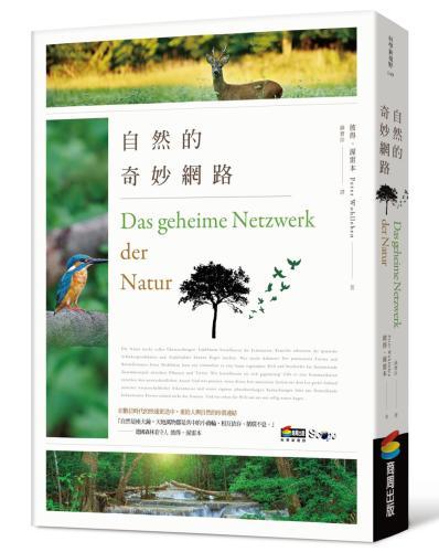 自然的奇妙網路